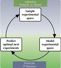 Iterated high-throughput experimentation with ProtoLife